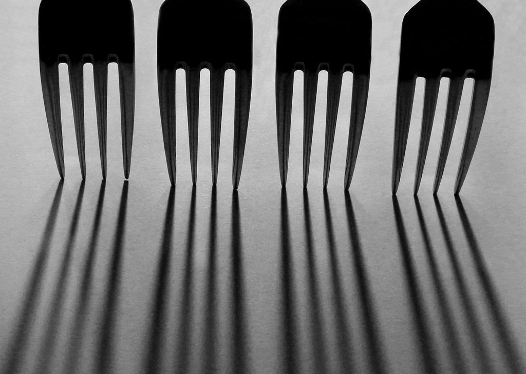 IOTY Print third place 'Fork Line Up' by Sue Clegg