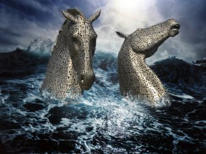"Digital Art winner ""Sea Horses"" by Jason Quayle"