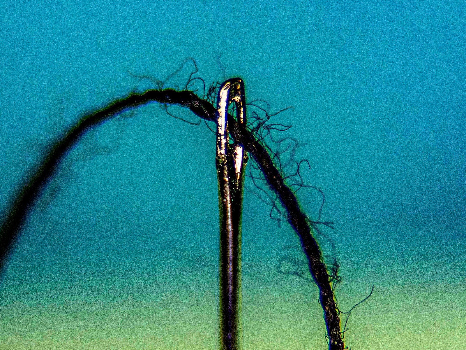 Threaded Needle by Jim Gibson