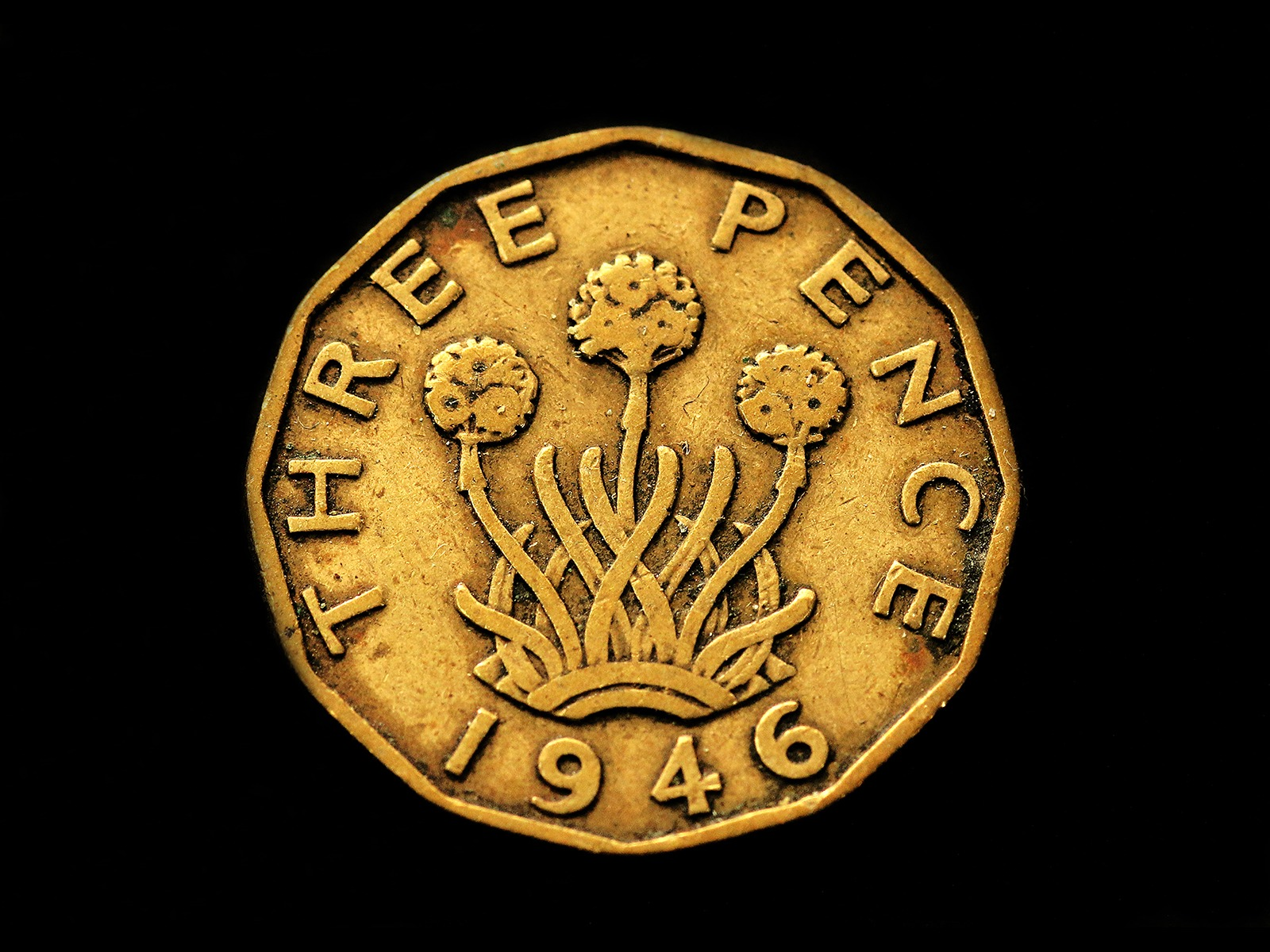 Half a Sixpence by Sue Clegg